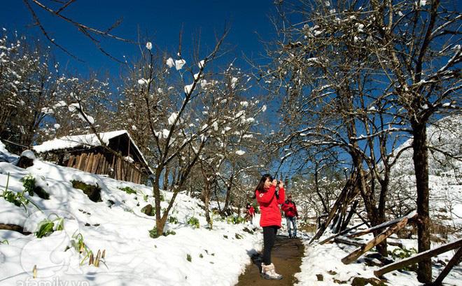 Ngắm băng tuyết trên đỉnh Fansipan là cơ hội hiếm có trong đời